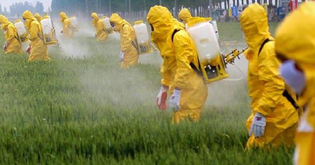 Polish chemical weapons